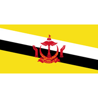 BRUNEI COUNTRY FLAG | STICKER | DECAL | MULTIPLE STYLES TO CHOOSE FROM